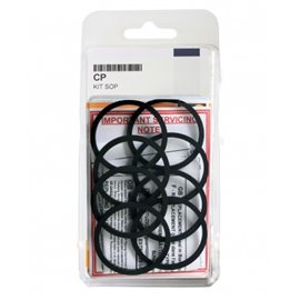 AP Racing O ring seal 2x 27.0 mm + 2x 31.8 mm + 2x 38.1 + 6x dust boots