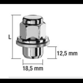 MUTTER MS12X1,25/37,5/21 (KINNINE, P37,5, CH21, SEIB 30MM) LAME IST