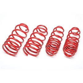 TA Technix lowering springs Mazda 2 DY 2003 - 2007